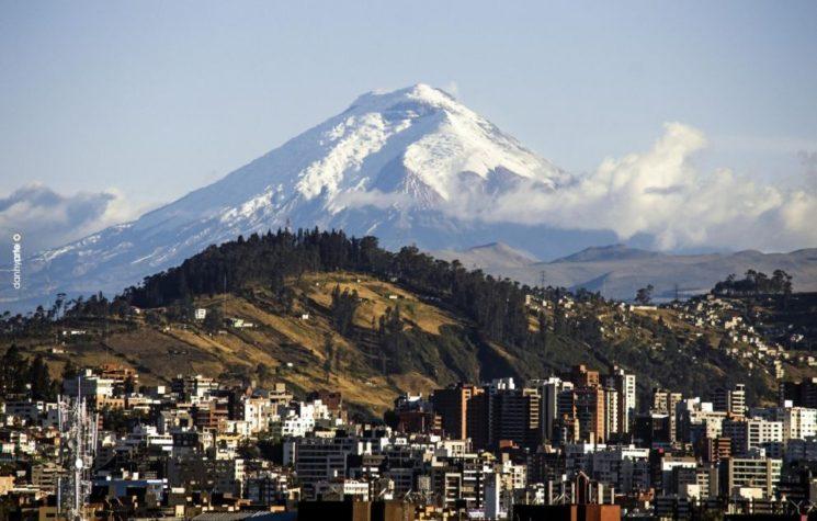 How Ecuador Descended Into COVID-19 Chaos