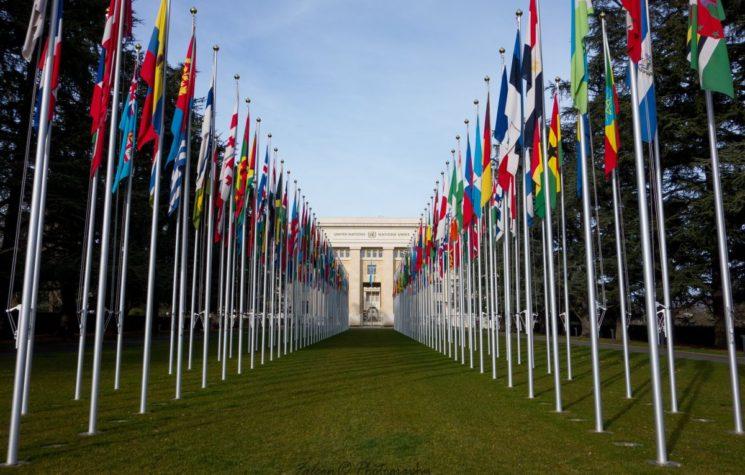 The Irrelevant UN