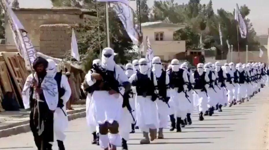 Jetzt kommen wieder die Terroristen